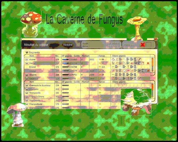 La Caverne de Fungus (Suite) & Projets