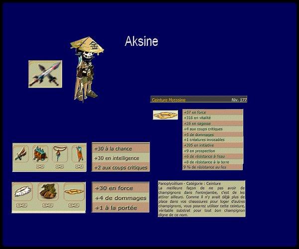 Aksine - Stuff terminé