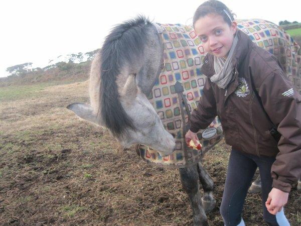 Joli cheval ♥