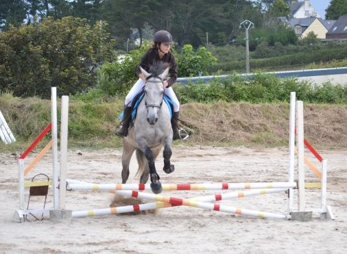 Passe ton coeur au dessus de l'obstacle, ton cheval fera le reste ♥