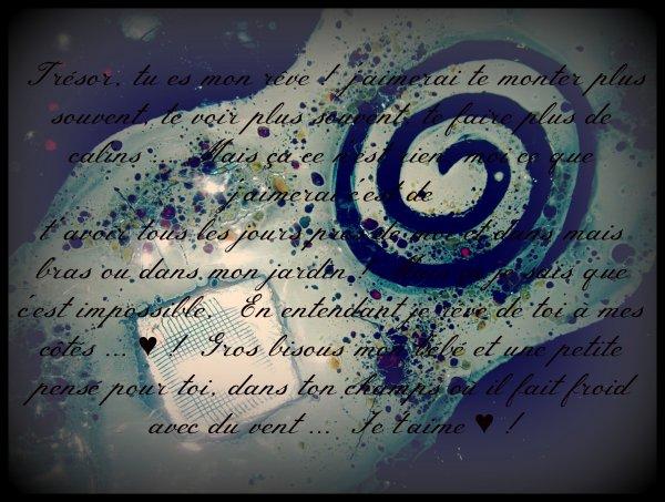 Poème pour mon poney au grand coeur ♥