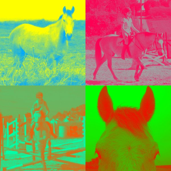 Pop Art ou Pop Cheval :D <3 ?!