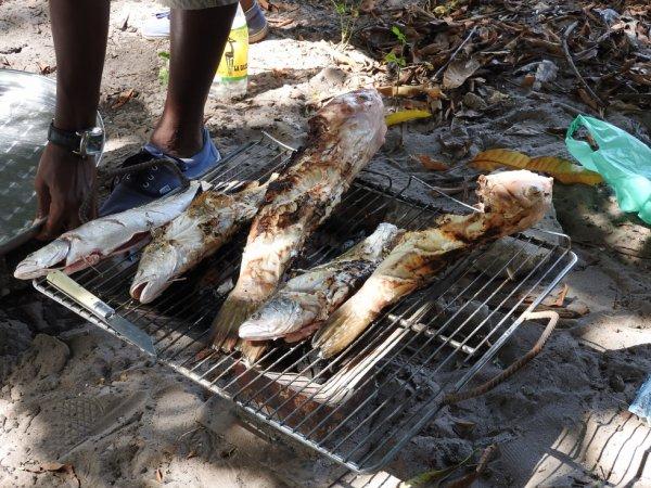 grillade de poissons