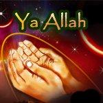 Les 99 Noms d'Allah Le Très-Haut