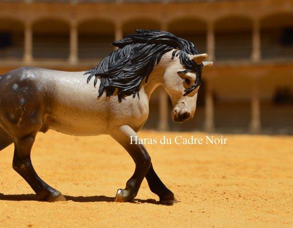 Andalousie :)