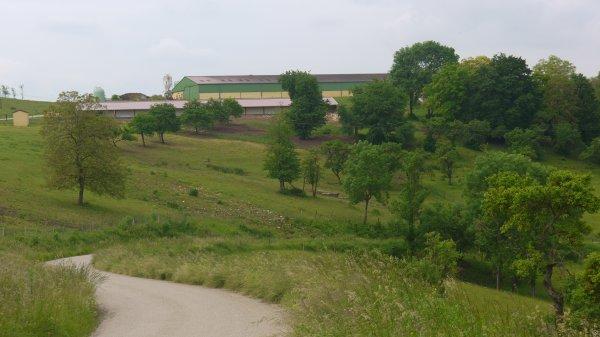 Exploitation agricole Varmonzey 88450