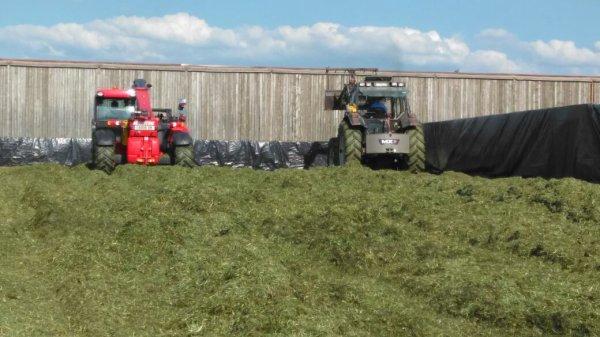 Ensilage herbes 06/05/16