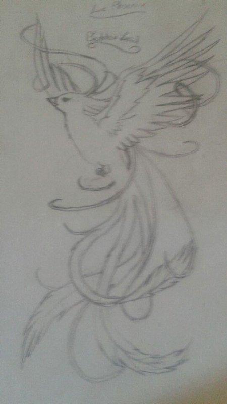 Des dessins de mes Curly !! #1 (Laïd Beddou)