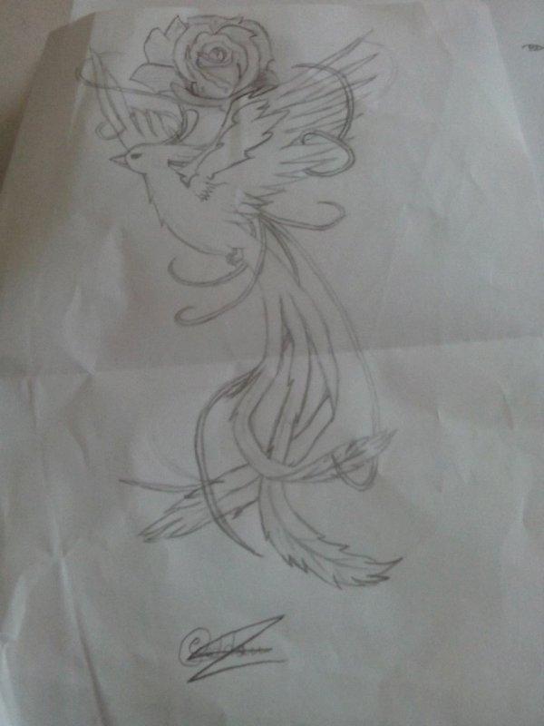 Des dessins de mes Curly !! #2 (Laïd Bedou)