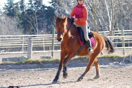 Mon poney d'amour de mon coeur <3