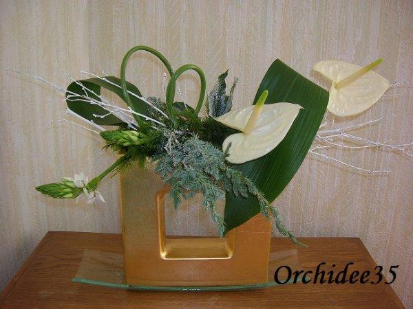 anthurium, ornithogalum