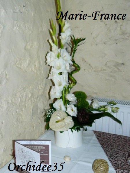 glaïeul, anthurium, lysianthus...