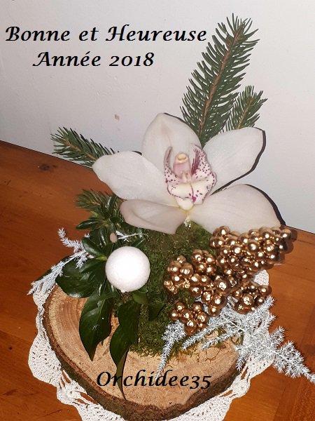 Meilleurs Voeux 2018 !!! (1477)