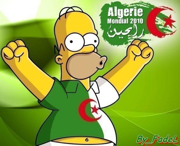 *homer Algérien*