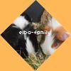 elba-family