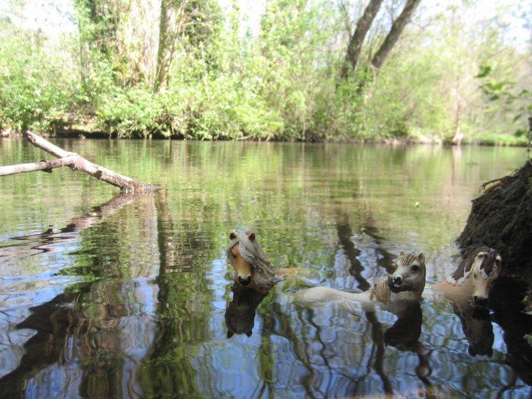 Série Photo: A la Rivière, partie 5.