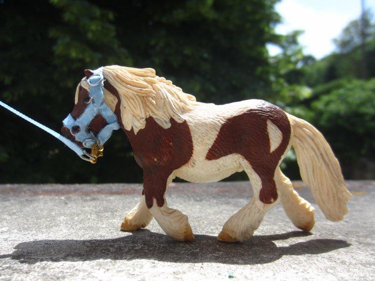Ma commande à Ever Beauty Horse ! 2