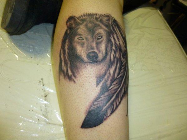 tete de loup avec plume