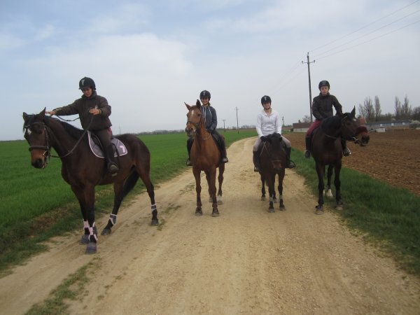 petite balade a 4 chevaux