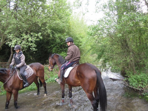 petite balade  a 2 chevaux dans la riviere
