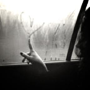 ▲ Il aimait la vie, elle aimait la mort, elle vivait pour lui, il est mort pour elle ►