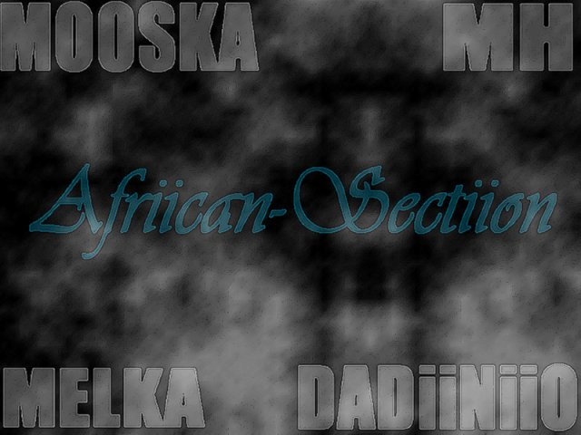 African Section