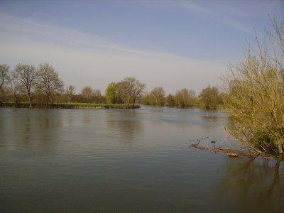 """Le fleuve"""" La Charente"""" autour d'un moulin."""