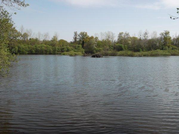 Sortie du Team Carpe 17 au lac de Brusson.
