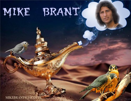 mon idole MIKE BRANT
