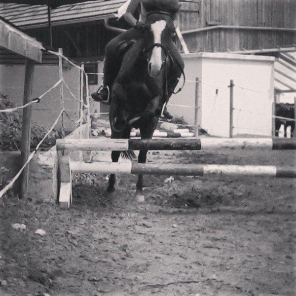 Cours de saut