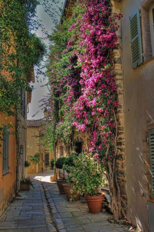 En Provence !!