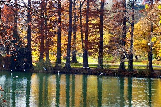 La France en automne