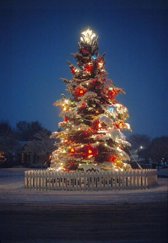 Un joyeux Noël à tous.