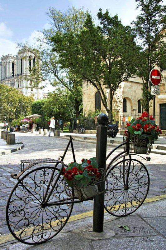 Découverte non loin de Notre-Dame de Paris !