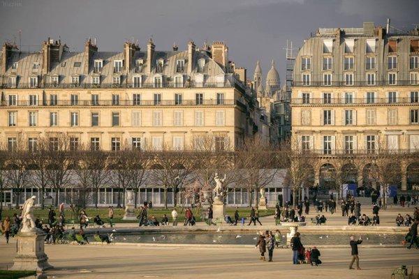 Les jardins des Tuileries à Paris !