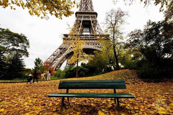Ambiance automnale à Paris !