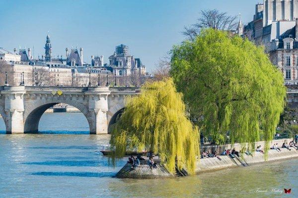 Promenade printanière sur les bords de la Seine !