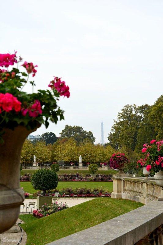 Balade Parisienne ; jardin du Luxembourg !