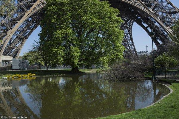 Près de la tour Eiffel !!!
