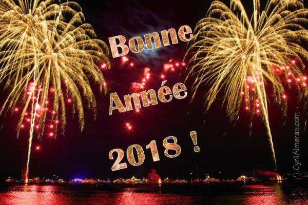 A toutes et tous très bonne année 2018!!!