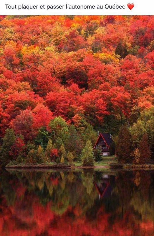 C'est beau, c'est merveilleux l'automne !!!