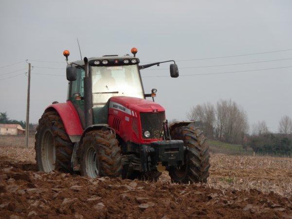 Labour d'hiver 2011