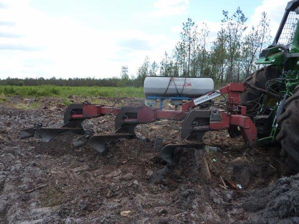Labour forestier 2011