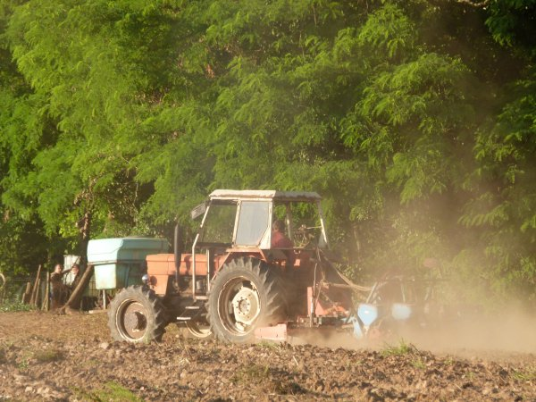Semis de maïs 2011