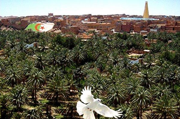La vallée du M'zab abritera bientôt une foire internationale de l'artisanat Les préparatifs s'accélèrent