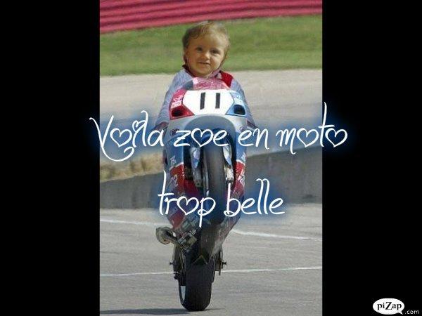 mes loulou en moto
