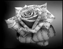 Une Rose !