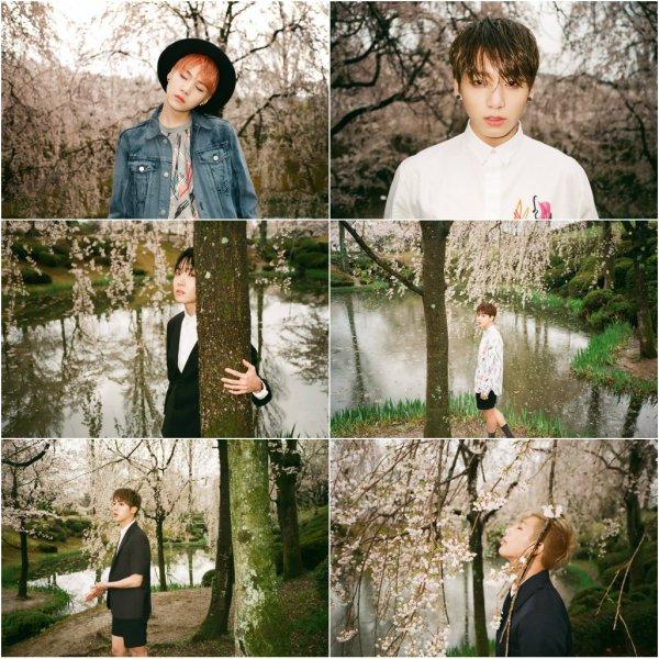 사진   Le groupe BTS  pour   Mood for love   (concept photo)