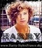 Harry-StylesFrance
