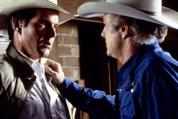 """1993, Steve KLOVES met en scène James aux côtés de Dennis QUAID et Meg RYAN (voir fiche de cette actrice dans ce blog) dans """"Flesh and Bone""""... Un livreur texan, Arlis, croise sur sa route une jeune femme paumée. Cette rencontre va déterrer une histoire terrifiante enfouie depuis très longtemps, à l'époque où le père d'Arlis mêlait son jeune garçon aux cambriolages qu'il effectuait dans les fermes isolées du Texas. ; En 1999, c'est sous la direction de Kelly MAKIN, que James partage l'affiche avec Hugh GRANT et Jeanne TRIPPLEHORN dans """"Mickey les yeux bleus""""... Gina eclate en sanglots quand Michael Felgate, commissaire-priseur britannique etabli a New York, lui demande de l'epouser. Michael comprend la reaction de la jeune femme quand il fait la connaissance de son pere, Frank, homme par ailleur sympathique mais membre influent de la redoutable famille mafieuse des Graziosi. Michael promet de se tenir a l'ecart du milieu de sa belle-famille et Gina accepte de l'epouser. Rester honnete va pourtant s'averer plus difficile que prevu. (affiches et photos des 2 films respectifs)."""